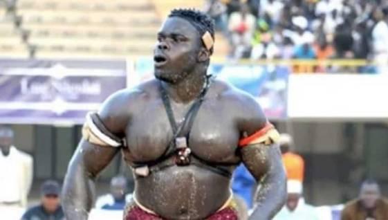 Африканскиот ѕвер имаше импресивно ММА деби (ВИДЕО)
